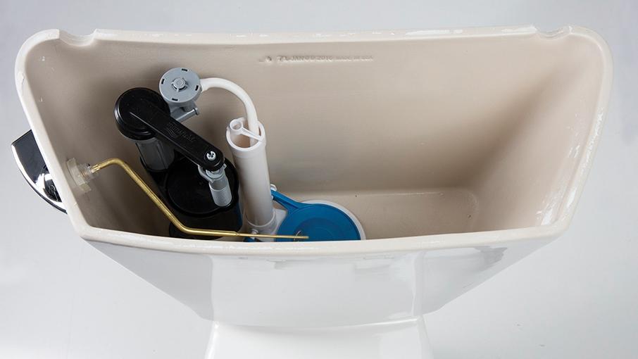 true beauty is inside the toilet us share markets