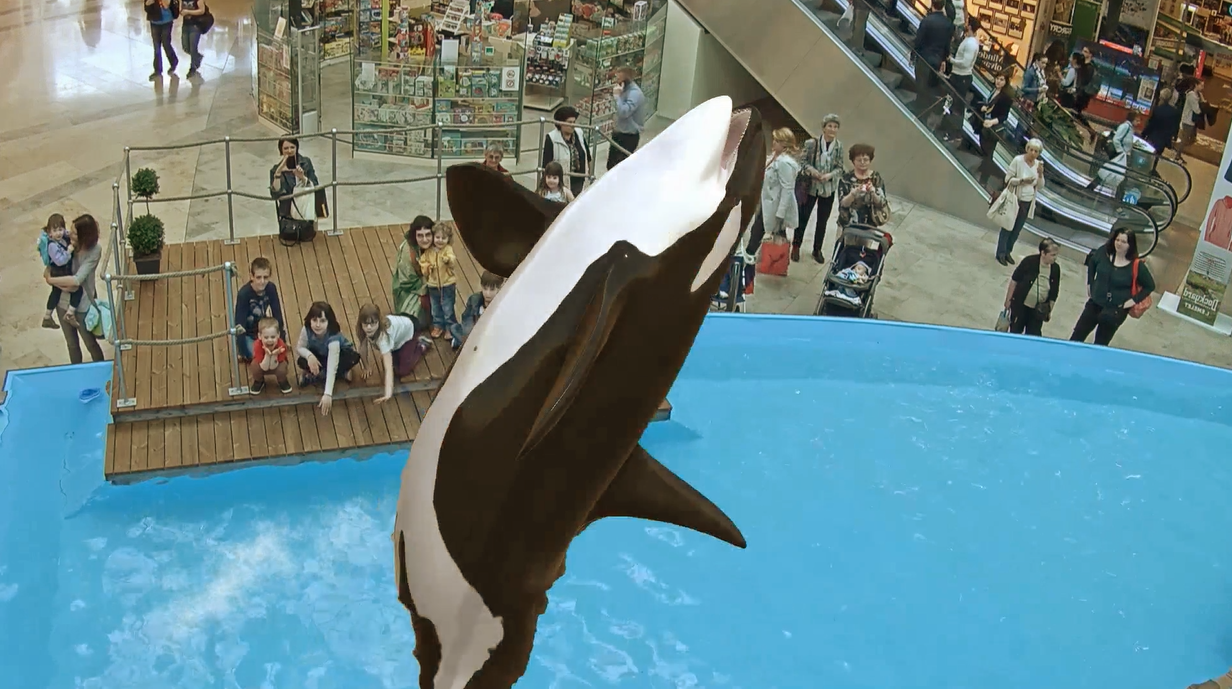 INDE's new virtual Orca show captivates Shopping Mall visitors