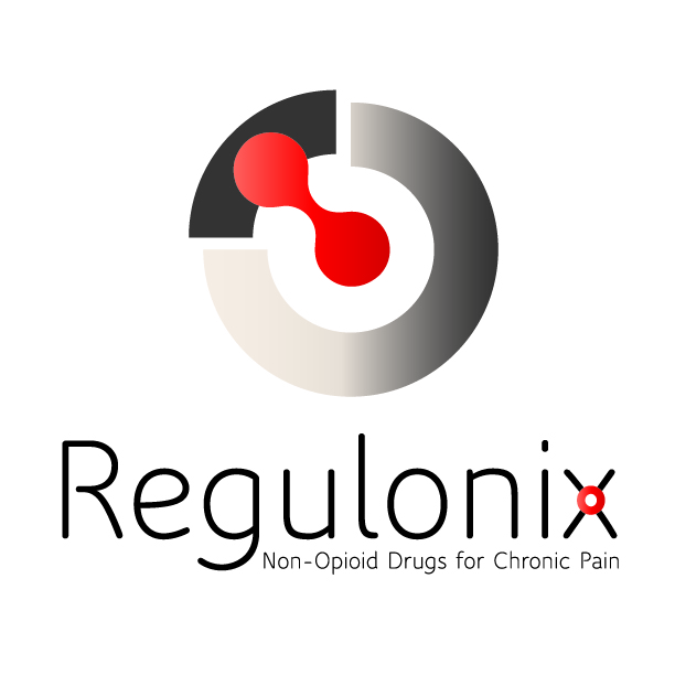 NON-OPIOID PAIN THERAPEUTICS COMPANY REGULONIX RAISES $2 MILLION IN SEED FUNDING LED BY UAVENTURE CAPITAL FUND