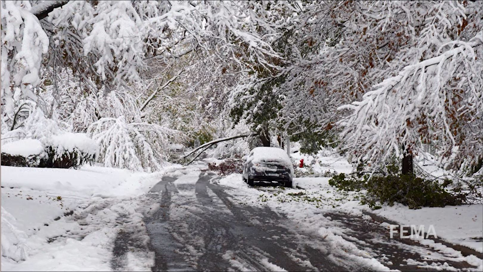 La Niña Severe Winter Weather Foretells Damaging Storms—Power Outages