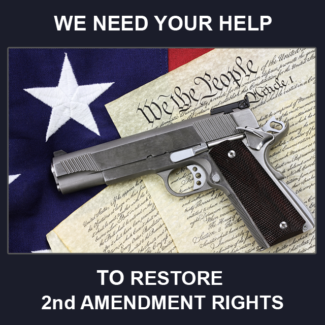 Breaking News - Nevada Candidate sues Feds over Gun Control Act